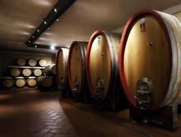 Wijnvakantie in Toscane