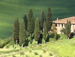 Vakantiehuis Italië huren