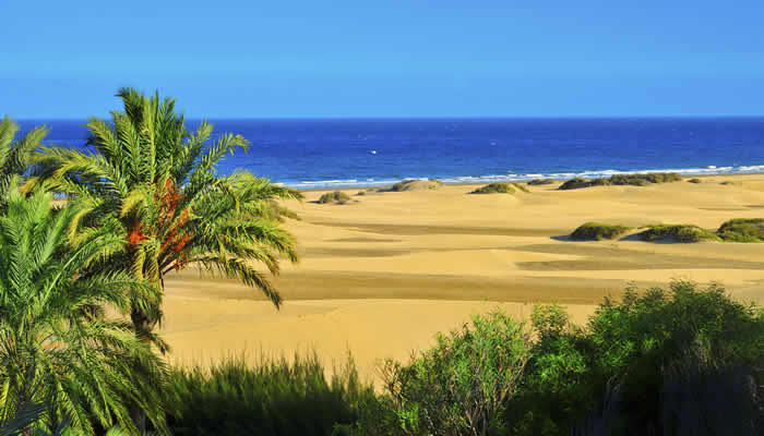 Dunas Maspalomas Gran Canaria