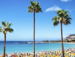 Vakantie op Gran Canaria