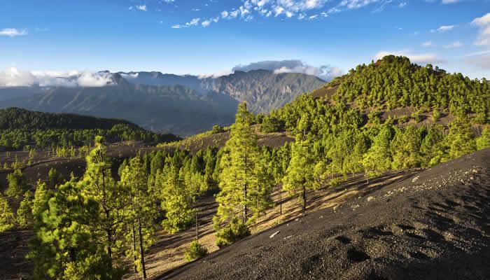 Natuur en een actieven vakantie La Palma