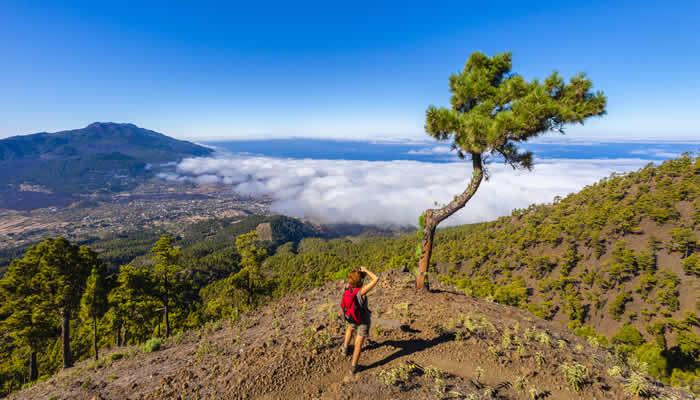 Vakantie op La Palma: tips en aanbiedingen