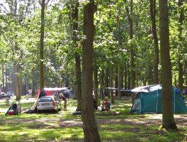 Aanbiedingen en korting Camp. & Ferienpark Markgrafenheide Markgrafenheide