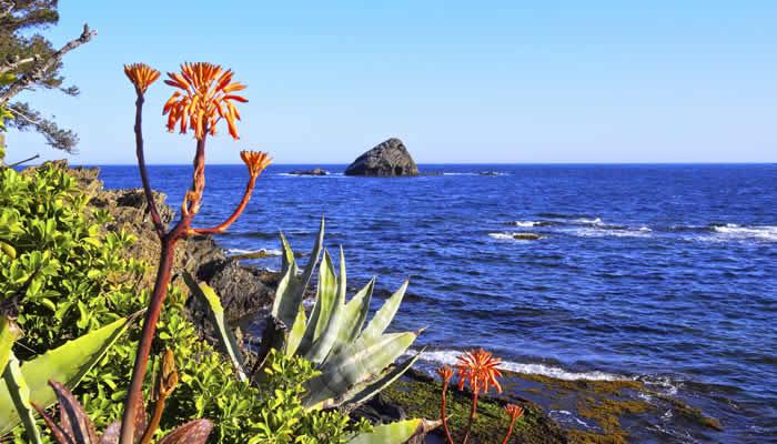 Strand en natuur aan de Costa Brava