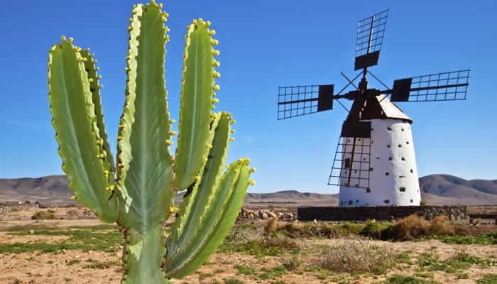 Vakantietips Fuerteventura