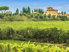 Wijnreizen en wijnvakanties in Italië