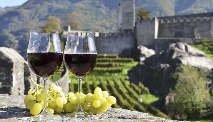 Wijnreizen en wijnvakanties in Duitsland, Italië en Frankrijk