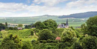 Vakantie in Champagne - Ardenne