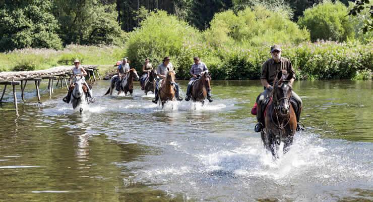 Paardrijden en natuur Champagne-Ardenne