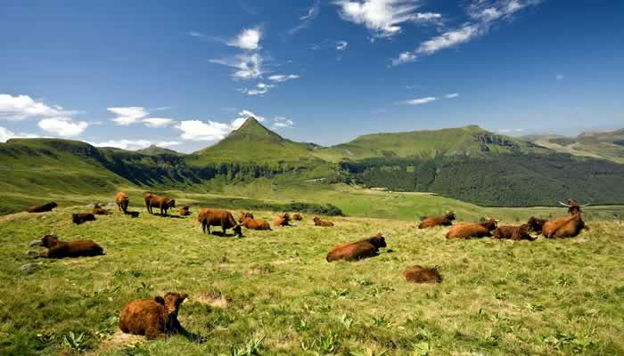 Culinaire topbestemming: de Auvergne