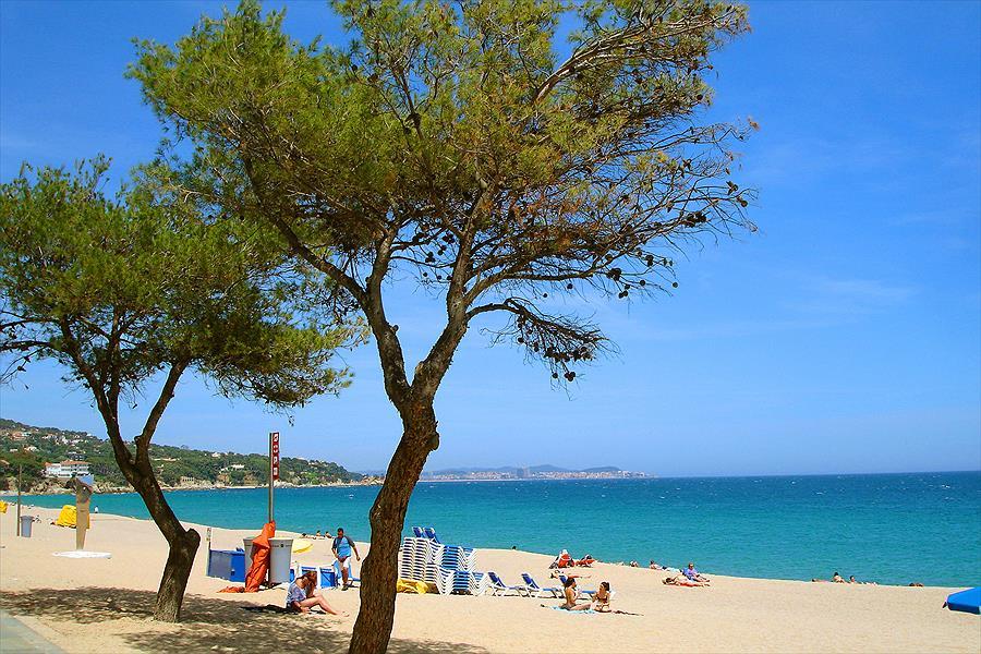 Valldaro Camping & Bungalows Resort bij Platja d'Aro (Gerona)