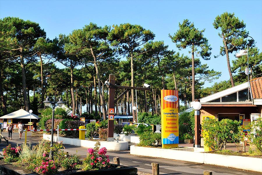 Aanbieding camping camp ole plage sud biscarrosse plage frankrijk - Office du tourisme biscarrosse plage ...