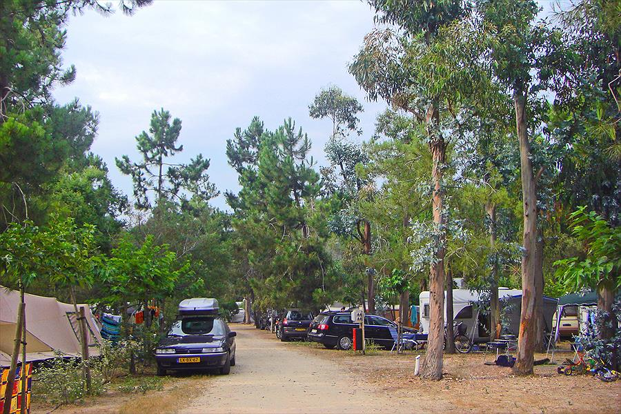 Camping Marina d'Aléria bij Aléria (Haute-Corse)