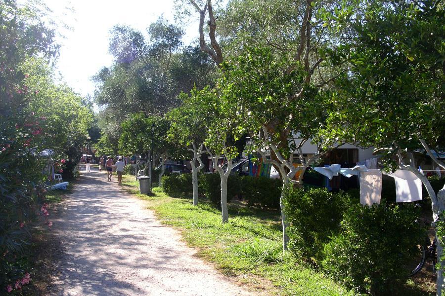 Camping Karda Beach bij Dassia (Ionische Eilanden)
