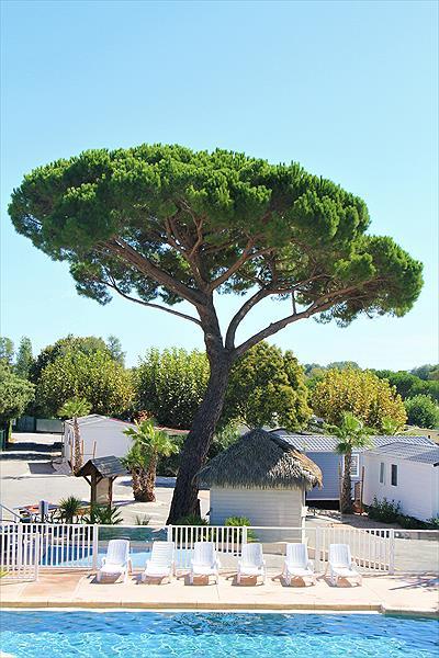 La Pinède in Grimaud is een kindvriendelijke camping in Frankrijk