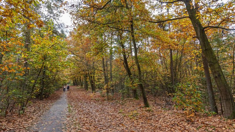 Bijzondere fietsroutes Oost-Nederland