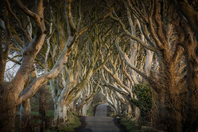 Rondreizen door Noord-Ierland