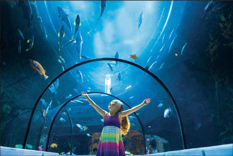 Quebec Aquarium